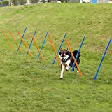 Anself Outdoor Dog Agility Training Poles Equipment Pet Activity Agility Weave Slalom 12 Pole Set with Carrying Case