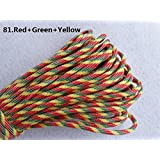 HSDOUBLE 100ft 550 Paracord Parachute Cord Lanyard Mil Spec Type III 7 Strand Core (Color 81)