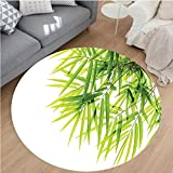 Nalahome Modern Flannel Microfiber Non-Slip Machine Washable Round Area Rug-o Leaf Illustration Icon for Wellbeing Health Fresh Purity Tranquil Art Print Green White area rugs Home Decor-Round 67''