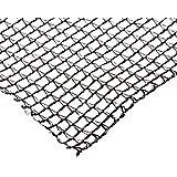 Dewitt Company Pond Netting, 12 by 20-Feet