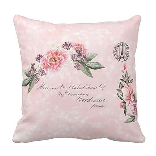 Kinhevao Cojín Rosa Elegante Shabby Roses Francés Paris ...