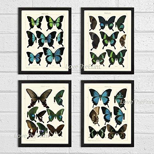 Butterfly Print SET of 4 Butterfly Art Prints 8X10 Beautiful Antique Blue Butterlies Garden Nature Interior Design Room Wall Decor to Frame