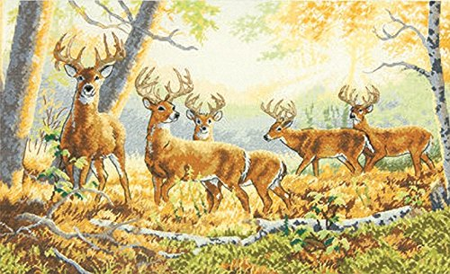 Dimensions 18 Count Gold Collection Summer's End Counted Cross Stitch Kit, 16 by 10-Inch