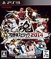 Professional Baseball Spirits (Pro Yakyu Spirits)2014 [Japan Import]