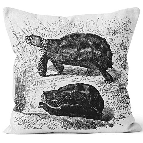 Nine City Antique of Forest Hinge Back Tortoise (Kinixys erosa) Sack Burlap Pillow,HD Printing Square Pillow case,20