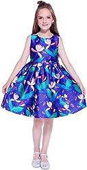 5879f3d319ff Kseniya Kids Wedding Dresses Flower Girls Dress for Baby Girl Clothes Girls  Summer Dress Party Dresses