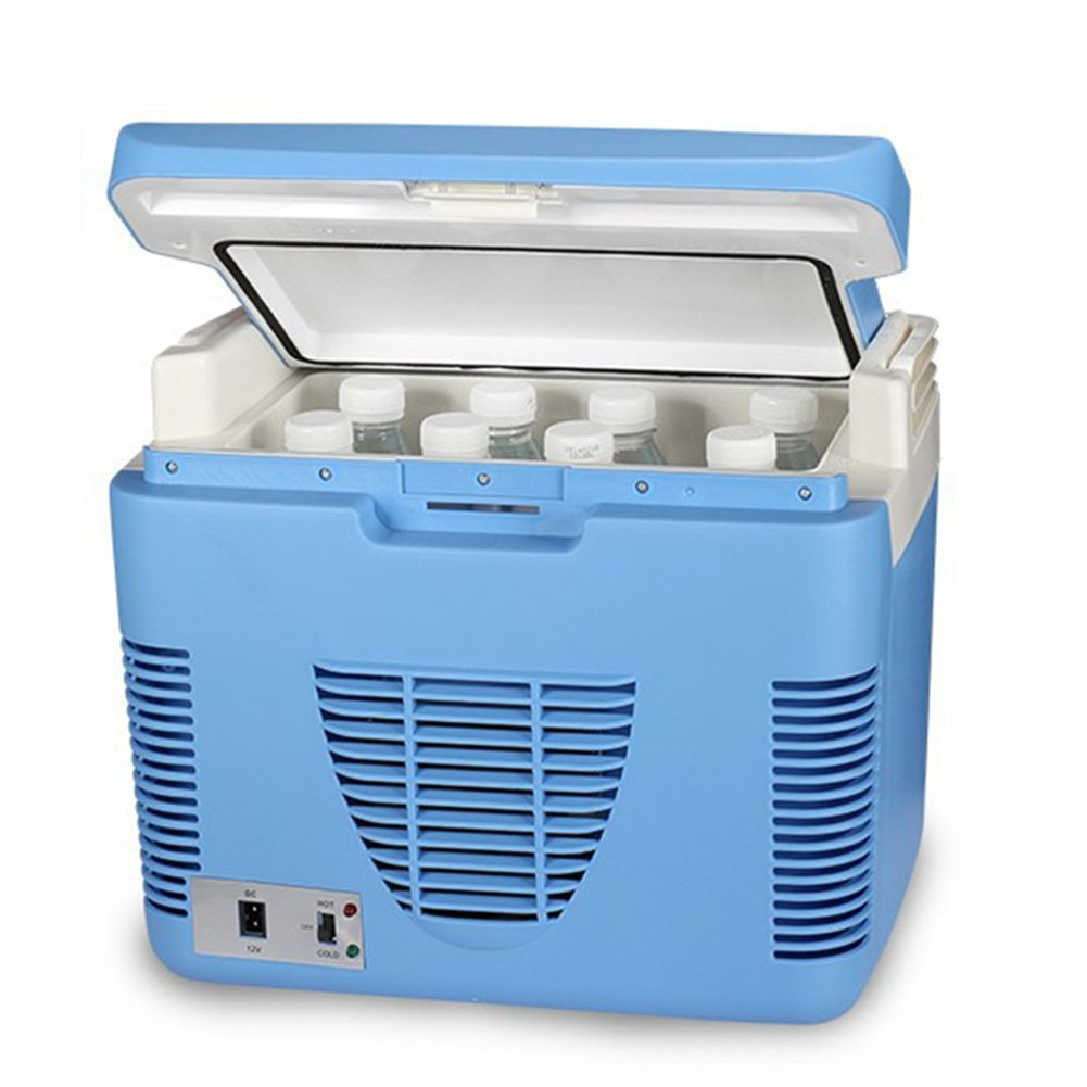LIQICAI 10L Tragbar Elektrische Kühlbox 12V Mini Kühlschrank Warm Cool Für Auto, Easy Swing Tragegriff