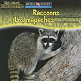 Raccoons Are Night Animals/Los Mapaches Son Animales Nocturnos, Joanne Mattern, 0836880536