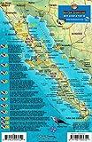 Baja & Sea of Cortez Mexico Dive Map & Fish Identification Guide Franko Maps Laminated Fish Card