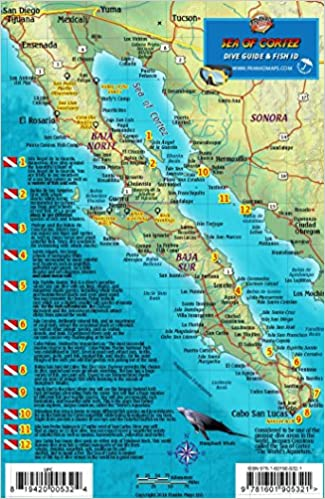 Sea Of Cortez Map Baja & Sea of Cortez Mexico Dive Map & Fish Identification Guide  Sea Of Cortez Map