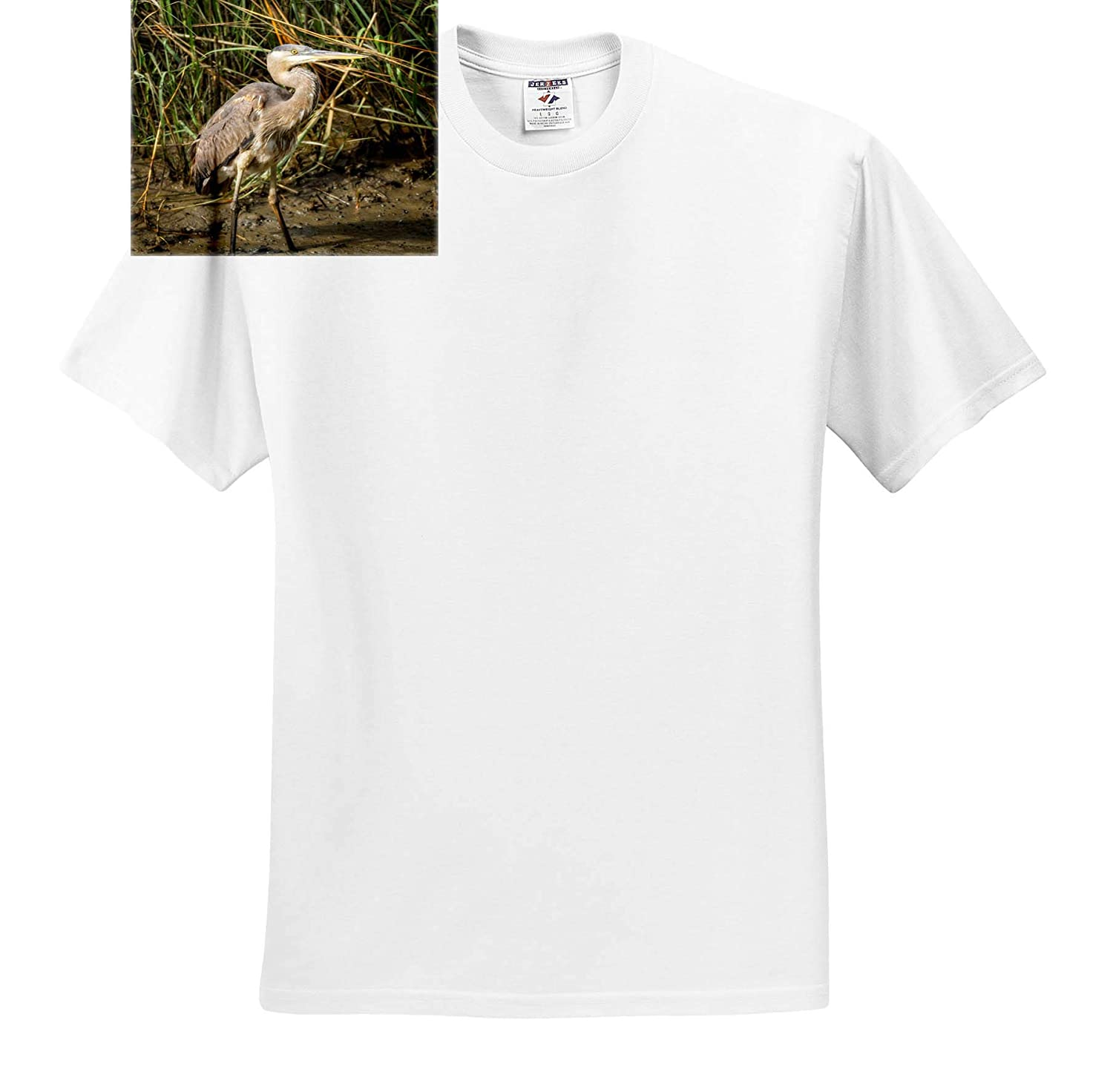 Wildlife Heron Standing in mud T-Shirts 3dRose Mike Swindle Photography