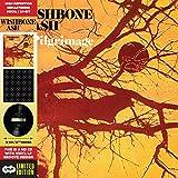 Pilgrimage - Cardboard Sleeve - High-Definition CD Deluxe Vinyl Replica + 1 Bonus Track - IMPORT