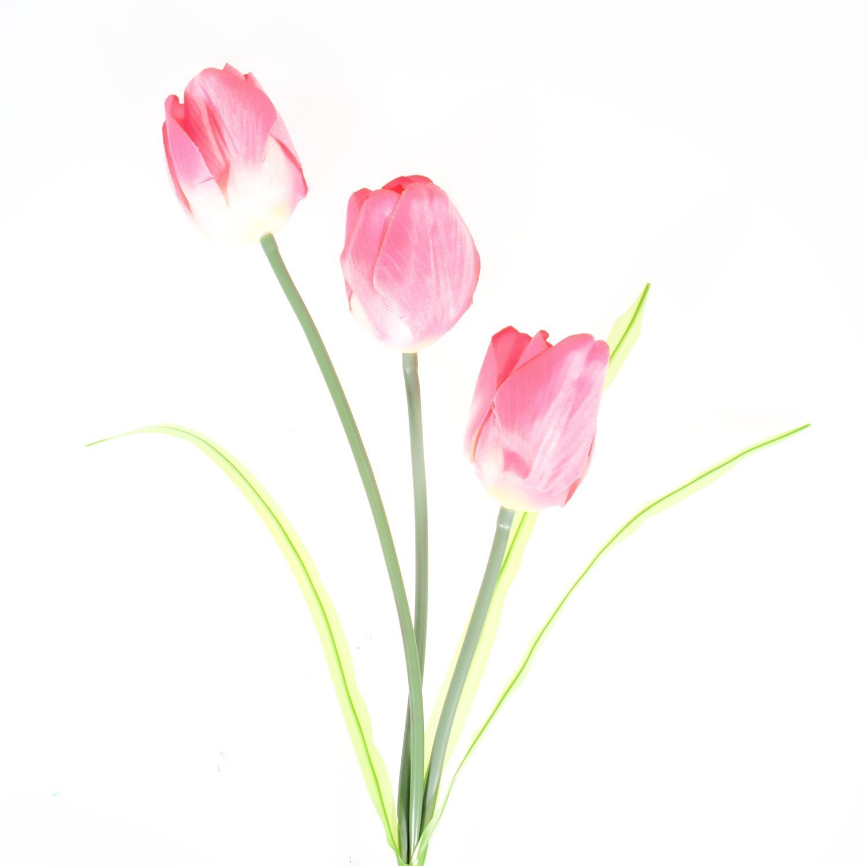 Tulip Solar Powered LED Garden Lights