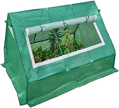 Gzhenh Invernadero Forma De La Torre Jardín Casa De Campo Plantando Aislamiento Gran Capacidad Marco De Acero Ventilación Invernaderos Terraza, EDUCACIÓN FÍSICA: Amazon.es: Hogar