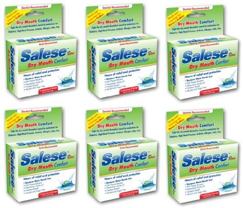 Salese Wintergreen with Xylitol for Dry Mouth Relief - 6 Pack