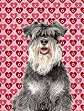 Cheap Caroline's Treasures KJ1192CHF Hearts Love and Valentine's Day Schnauzer Flag Canvas, Large, Multicolor