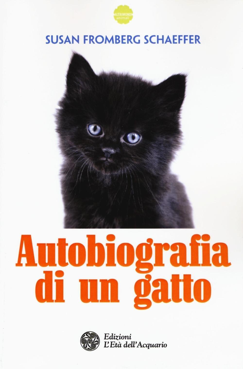 Amazonit Autobiografia Di Un Gatto Susan Fromberg Schaeffer S
