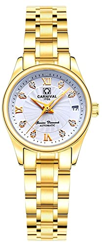 Carnaval reloj mujer Fashion marcas de acero inoxidable automático FECHA mecánica resistente al agua reloj de pulsera: Carnival: Amazon.es: Relojes