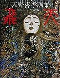 img - for The Art of Yoshitaka Amano: Hiten (Japanese Language Text) book / textbook / text book