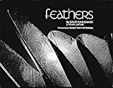 img - for Feathers book / textbook / text book