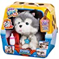Little Live Pets Frosty My Dream Puppy by Moose Toys