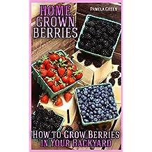 Home Grown Berries: How to Grow Berries in Your Backyard
