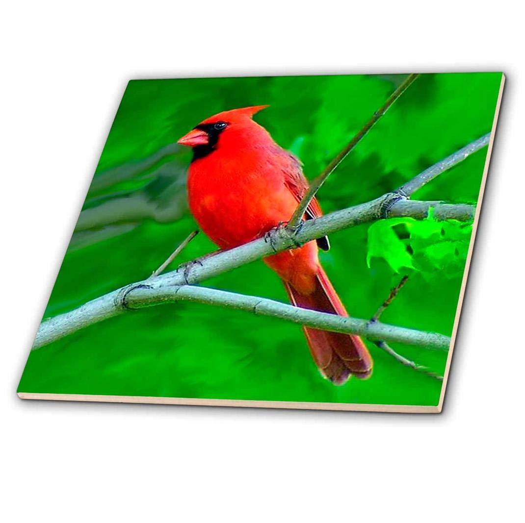 12-Inch 3dRose ct/_3121/_4 Red Cardinal Ceramic Tile