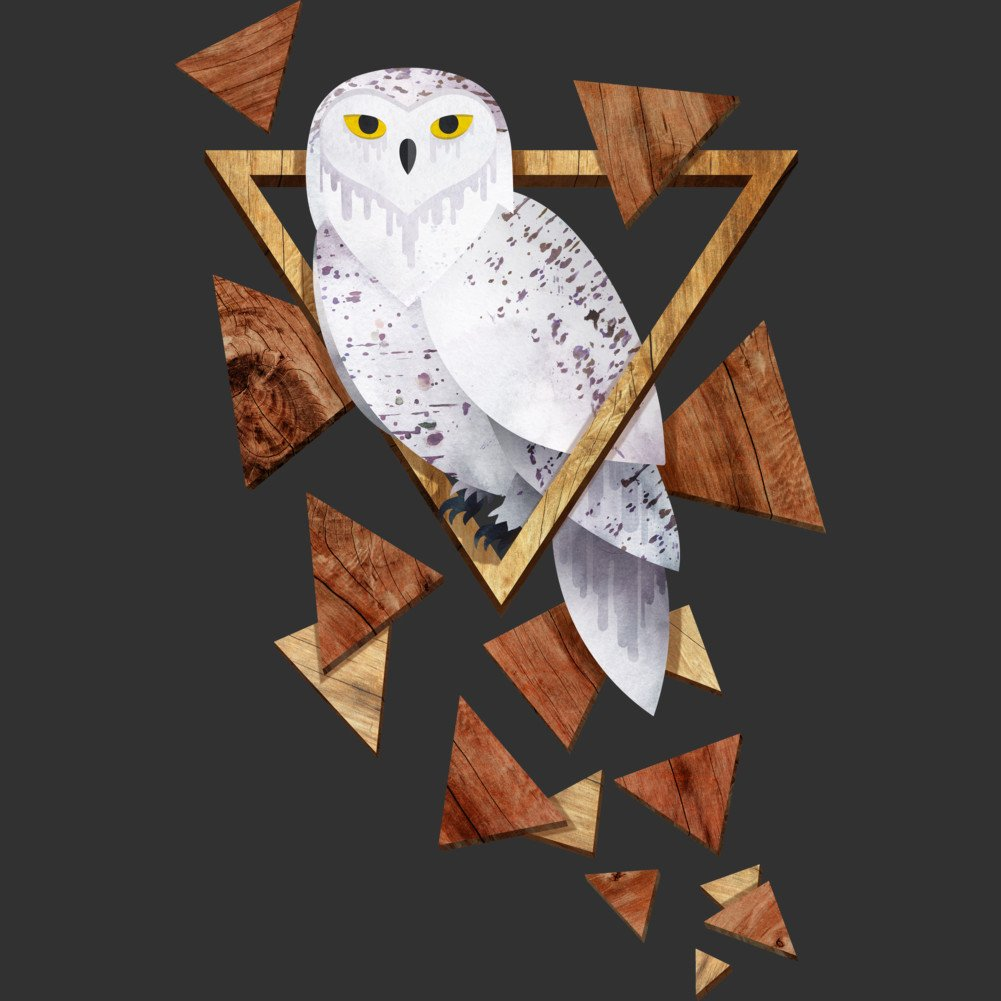 Owl in the Woods Boys Youth Graphic T Shirt Design By Humans