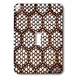 3dRose lsp_208897_1 Jaipur, Rajasthan, India. Designs in Window Latticework, Amber Palace. Single Toggle Switch