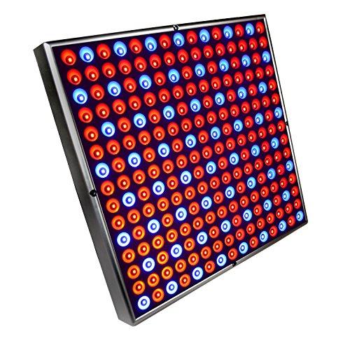 225 High Power Blue Lamp Led Plant Grow Light Panel in US - 9
