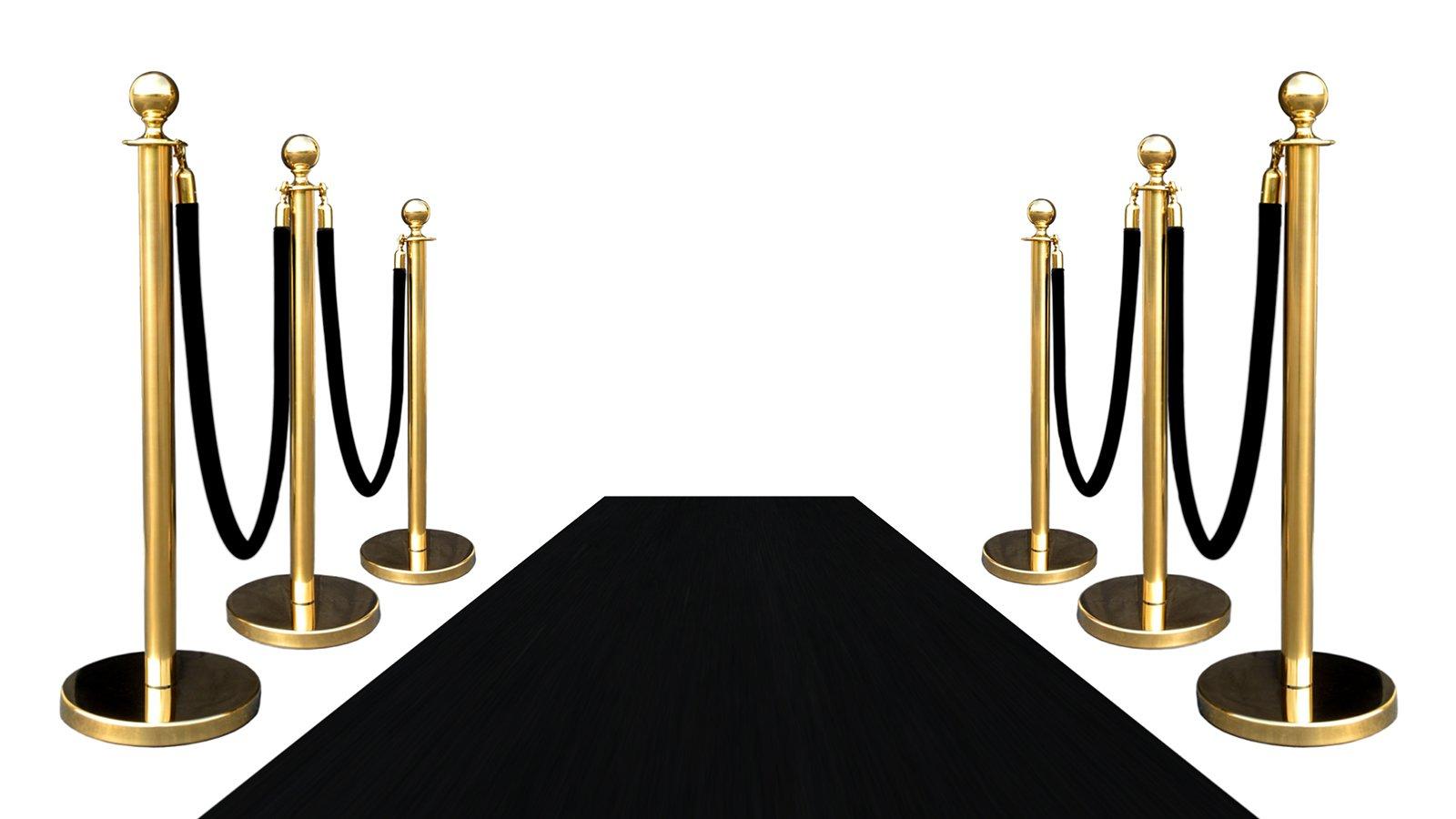 VIP BLACK CARPET COMBO SPECIAL (PKG INC 6-GOLD + 4-ROPES + 1-3'X10' BLACK CARPET)