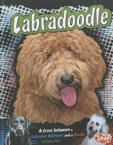 Labradoodle: A Cross Between a Labrador Retriever and a Poodle (Designer (Designer Dog Series)
