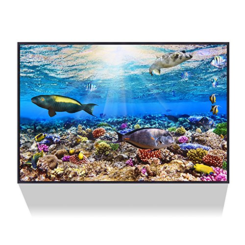(Live Art Decor --Underwater Ocean Sea World Giclee Canvas Art with Shadow Box Frame,Sunlight through Sea,Modern Home Decoration,Tropical Fish Pictures Print on Canvas Ready to Hang - 24