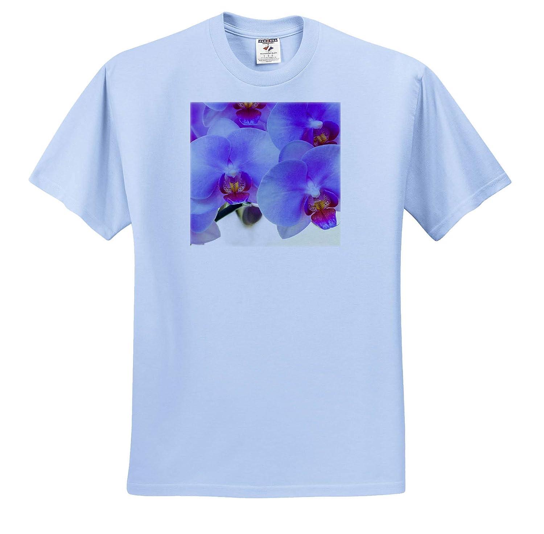 ts/_313901 Adult T-Shirt XL Flowers Pink Orchid Blooms 3dRose Danita Delimont