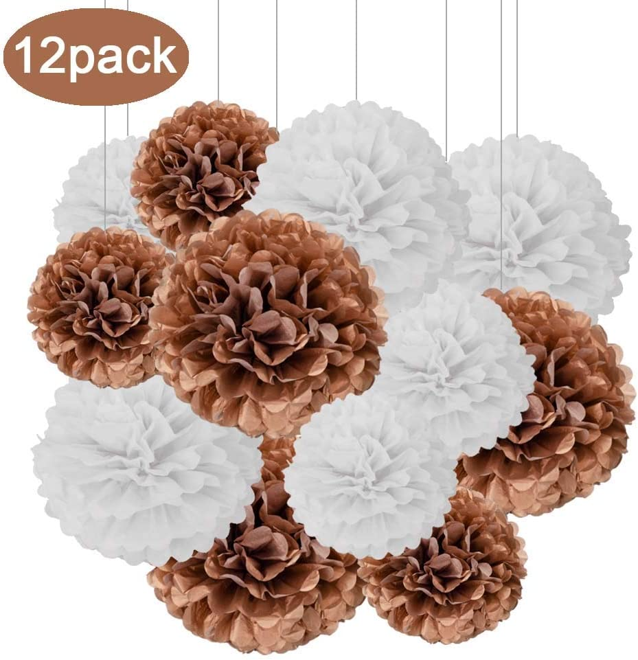 Aimto 12pcs Black Paper Pom Poms Decorations for Party Ceiling Wall Hanging Tissue Flowers Decorations 10 Inch 1 Color of 12 Inch