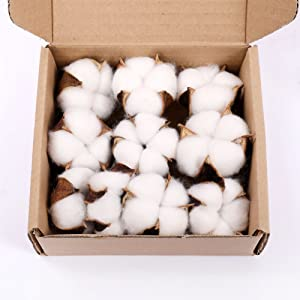 Darget Cotton Balls Decor - 10 Pieces for Wreath Decor Cotton Bolls (Balls) Made of Real Natural Cotton Great for Crafting Farmhouse Style