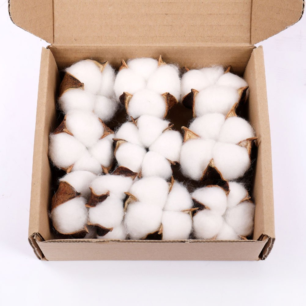 Cotton Balls Decor - 20 Pieces for Wreath D¨¦cor Cotton Bolls (Balls) Made of Real Natural Cotton Great for Crafting Framhouse Style Darget
