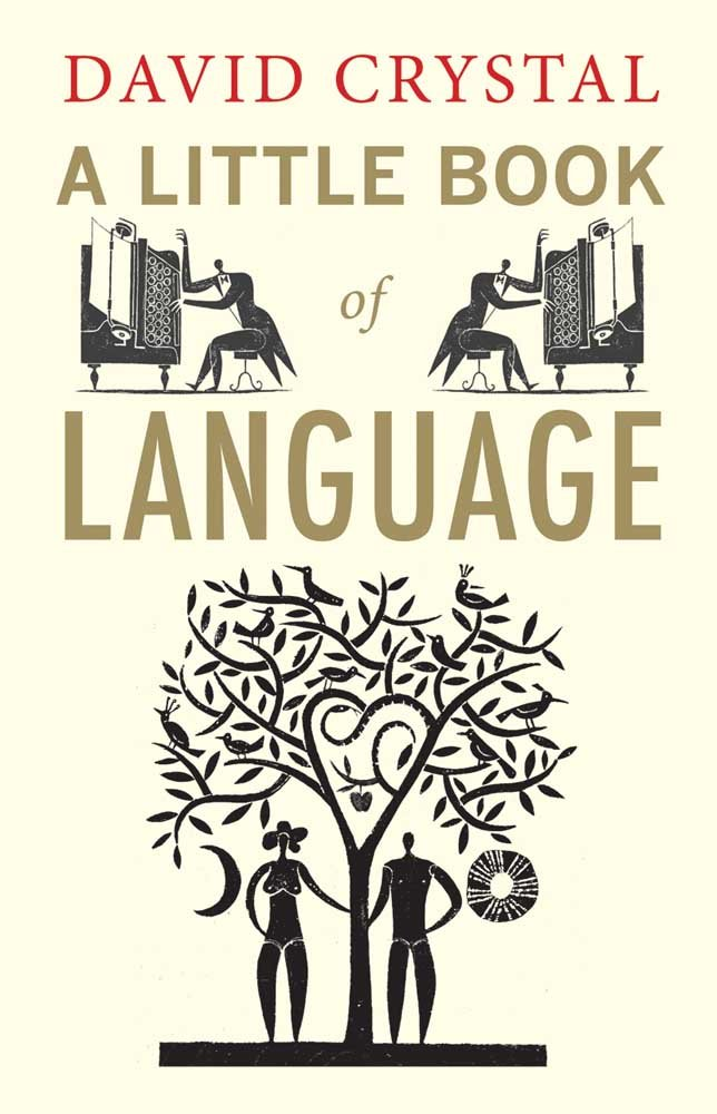 A Little Book of Language pdf