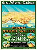 Bumblebeaver TRAVEL TOURISM GWR RAILWAY WALES SPORT FUN SUN MAP FINE ART PRINT POSTER