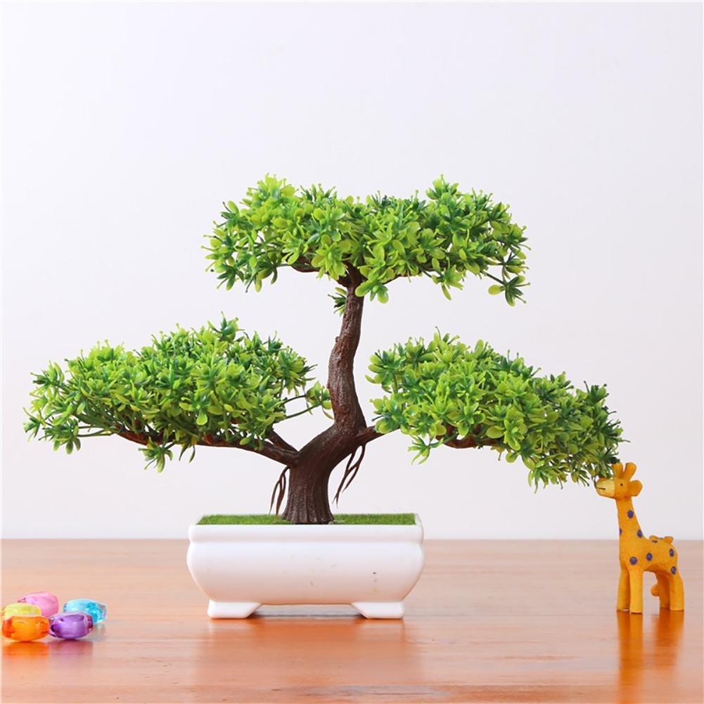 Pflanzen Dekoration Home Hochzeit Lucky Dekoration Deko
