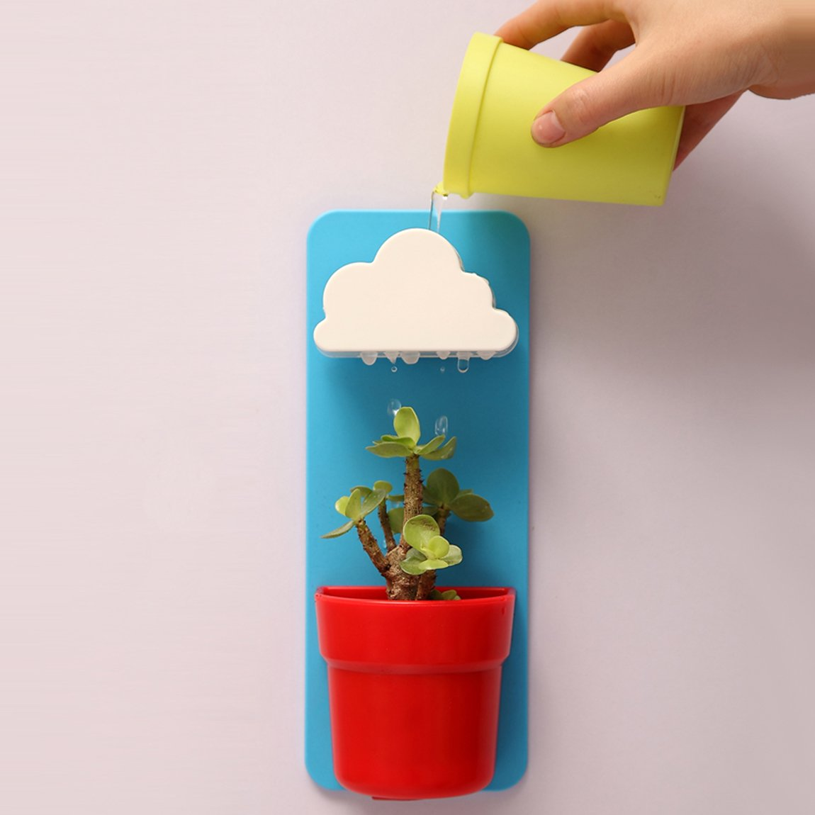 Wall hanging plant pot!