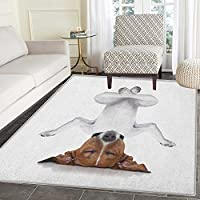 Yoga Area Rug Carpet Dog Upside Down Relaxing with Closed Eyes Doing Yoga Calm Therapy Humor Animal Print Living Dining Room Bedroom Hallway Office Carpet 3x4 White Brown