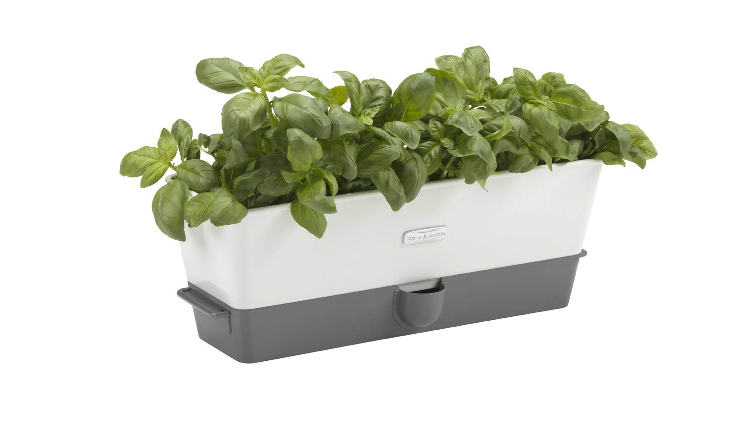 Cole Mason Fresh Herb Range Self-Watering Potted Herb Keeper, Enamel Coated Steel, White and Grey, Triple