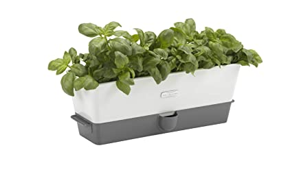 Amazoncom Cole Mason Self Watering Herb Keeper Triple White By