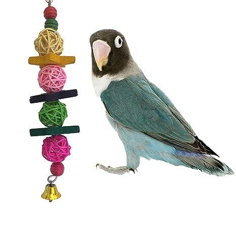 Colorful pelotas Toy Pet Parrot Macaw africana Greys Budgies ...