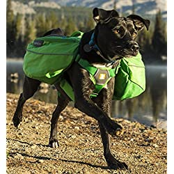 RUFFWEAR 2017 APPROACH DOG PET BACKPACK ♦ ADJUSTABLE EVERYDAY HIKING CAMPING PACK ♦ ALL SIZES AND COLORS (Large / XL, Meadow Green)