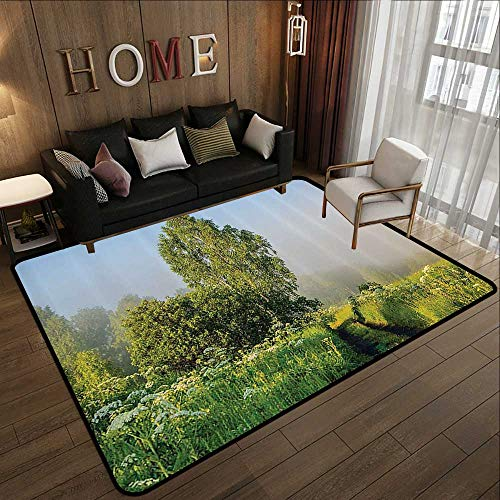 Small Rugs,Nature Decor,Beautiful Serenity Trees Track Path Garden Leaves and Grass Sunny Skies Photography,Green 55