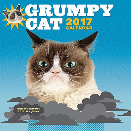 Grumpy Cat 2017 Wall Calendar (Am Lab Cleaning Products)