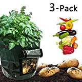 ZALALOVA Grow Bags, 3-Packs Garden Vegetables Planter Bagswith Handles and Flap Heavy Duty for Potato, Carrot, Tomato and Onion (7 Gallon x 2 & 10 Gallon x 1)