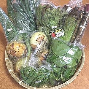 【産地直送】くり坊農園 自然栽培 元氣野菜セットS(農薬・肥料不使用/約4~8品目)